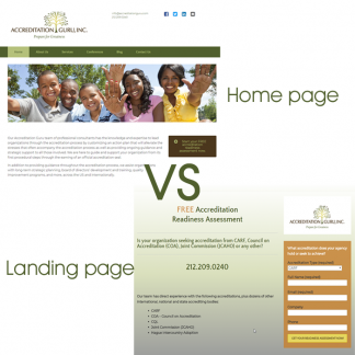 example: home page vs landing page